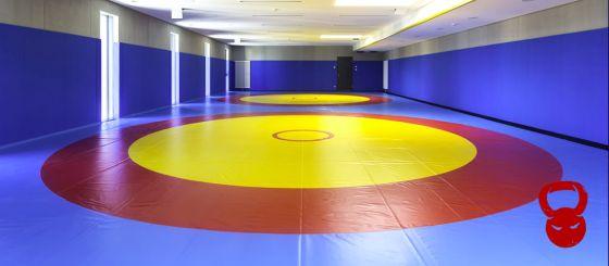 Борцівські килими для єдиноборств